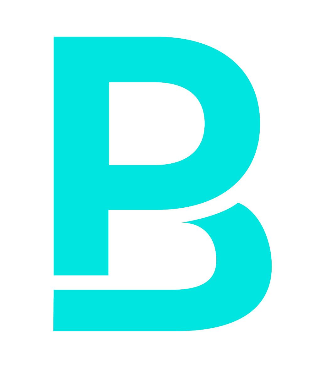 Logo PB Pierre Bouguier Waostudio
